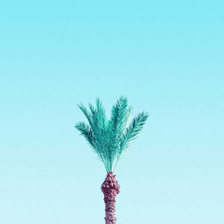 Candy-Colored-Minimalism-Photography-11