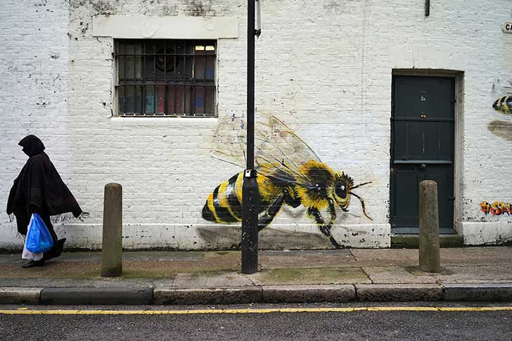 bees-11