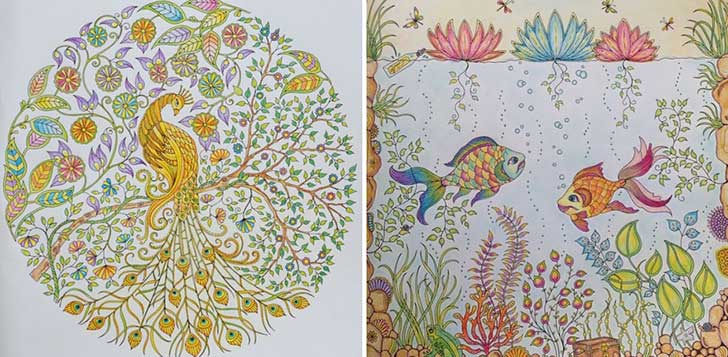 coloring-books-for-adults-johanna-basford-13__880