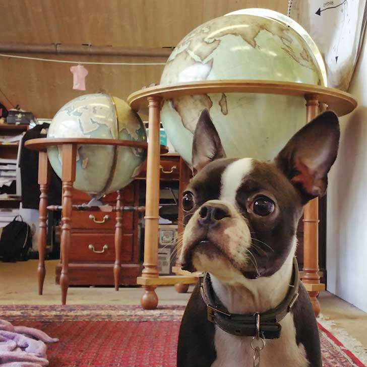 One-of-the-Worlds-Only-Globe-Making-Studios-Celebrates-the-Ancient-Art-of-Handcrafted-Globes12__880