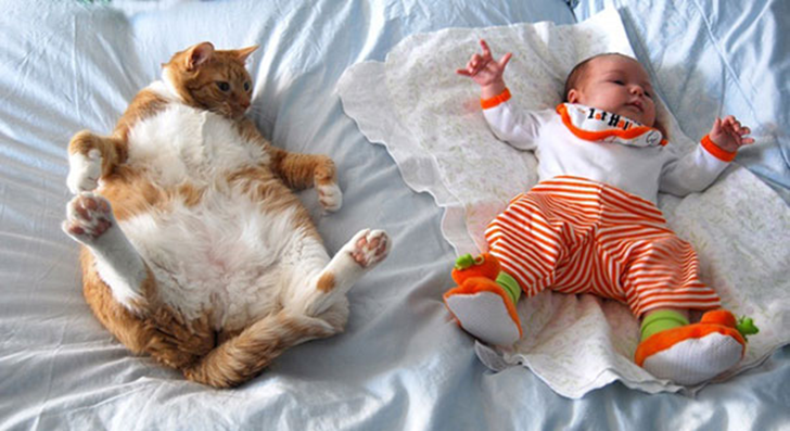 kids-with-cats-605