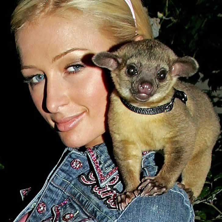 10-Exotic-Animals-Adopted-As-Celebrity-Pets-3