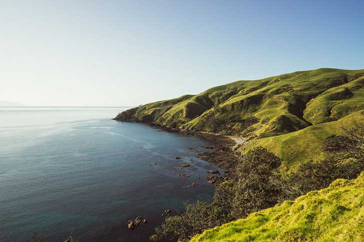 i-spent-a-year-exploring-new-zealand-to-bring-back-these-photos-and-it-blew-my-mind-9__880