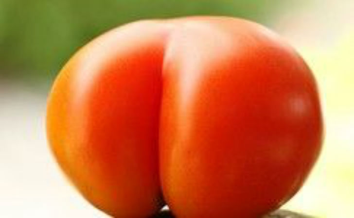 Tomate culo