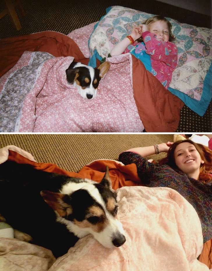 before-after-dogs-growing-up-together-with-owners-68-58297ed4262b1__700-2