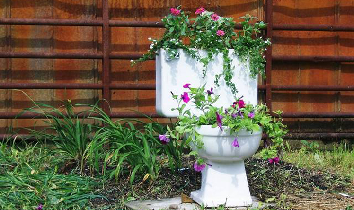 toilet_and_flowers_2