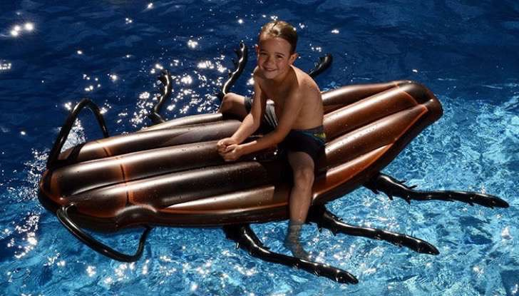 gigantic-cockroach-raft-inflatable-pool-float-kangaroo-9 2